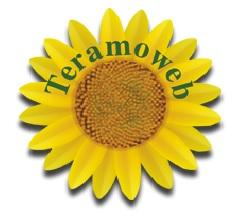 TERAMO WEB