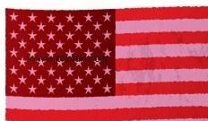 bandiere-americane_341816